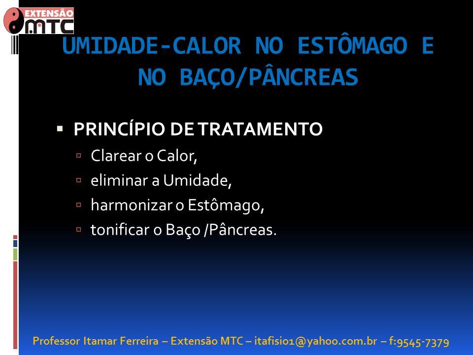 Professor Itamar Ferreira – Extensão MTC – itafisio1@yahoo.com.br – f:9545-7379 UMIDADE-CALOR NO ESTÔMAGO E NO BAÇO/PÂNCREAS PRINCÍPIO DE TRATAMENTO C