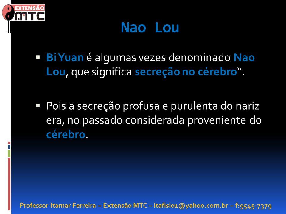Professor Itamar Ferreira – Extensão MTC – itafisio1@yahoo.com.br – f:9545-7379 Nao Lou Bi Yuan é algumas vezes denominado Nao Lou, que significa secr