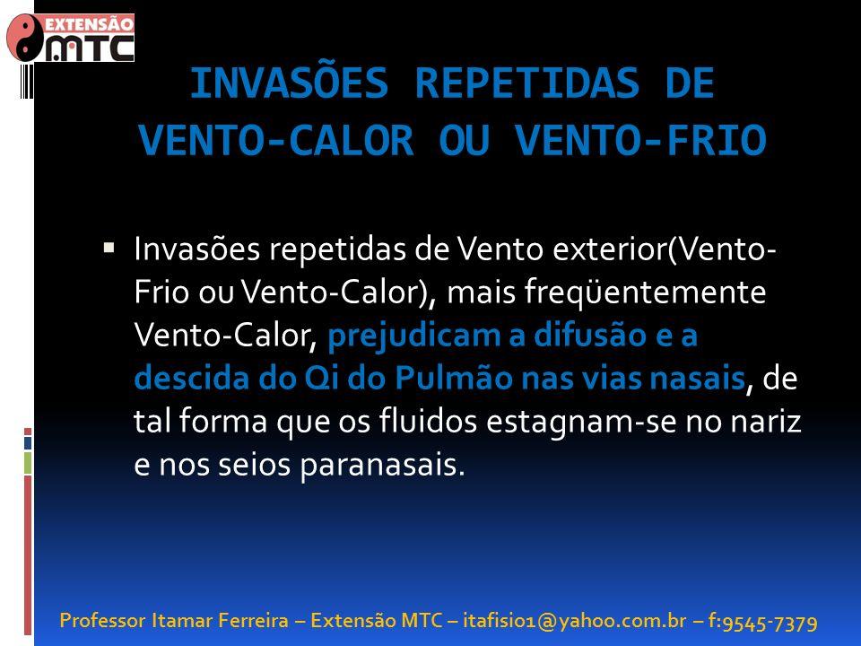 Professor Itamar Ferreira – Extensão MTC – itafisio1@yahoo.com.br – f:9545-7379 INVASÕES REPETIDAS DE VENTO-CALOR OU VENTO-FRIO Invasões repetidas de
