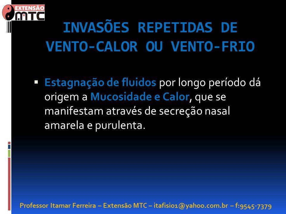 Professor Itamar Ferreira – Extensão MTC – itafisio1@yahoo.com.br – f:9545-7379 INVASÕES REPETIDAS DE VENTO-CALOR OU VENTO-FRIO Estagnação de fluidos