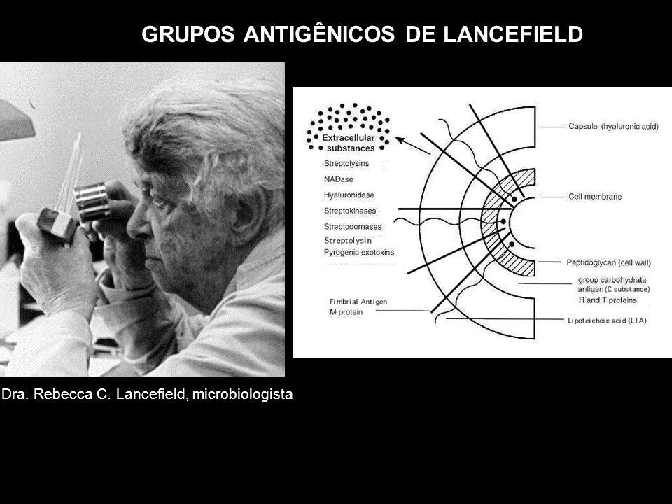 GRUPOS ANTIGÊNICOS DE LANCEFIELD Dra. Rebecca C. Lancefield, microbiologista