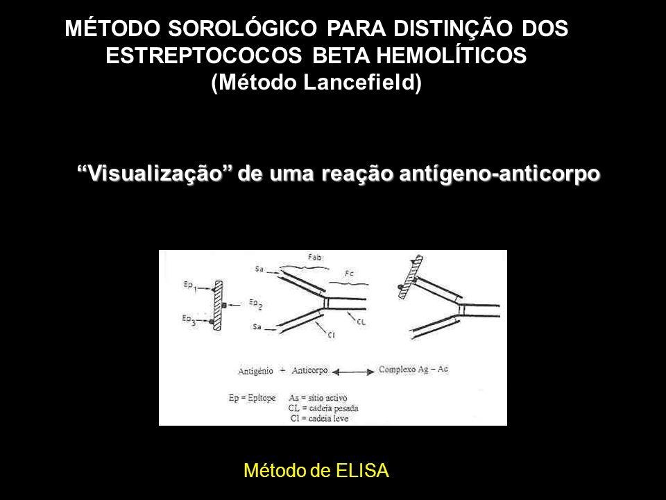 MÉTODO SOROLÓGICO PARA DISTINÇÃO DOS ESTREPTOCOCOS BETA HEMOLÍTICOS (Método Lancefield) Visualização de uma reação antígeno-anticorpo Método de ELISA