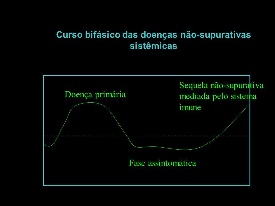 Curso bifásico das doenças não-supurativas sistêmicas Doença primária Fase assintomática Sequela não-supurativa mediada pelo sistema imune