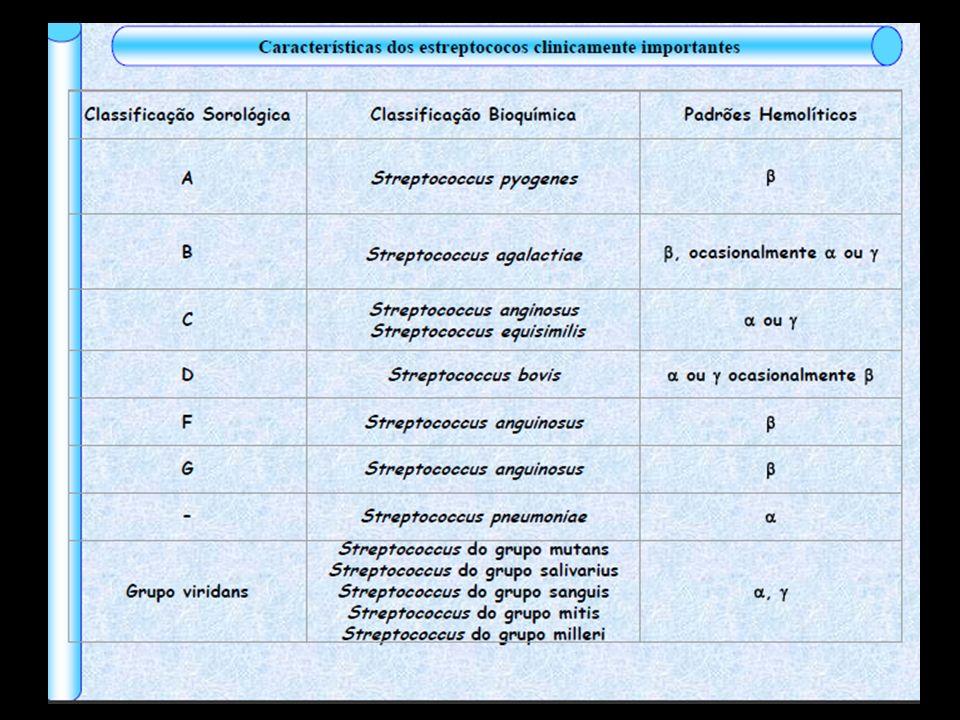 Estreptococos Sistema de Classificação: - Antigênica - Tipos de antígenos de carboidrato da parede celular – grupos de Lancefield