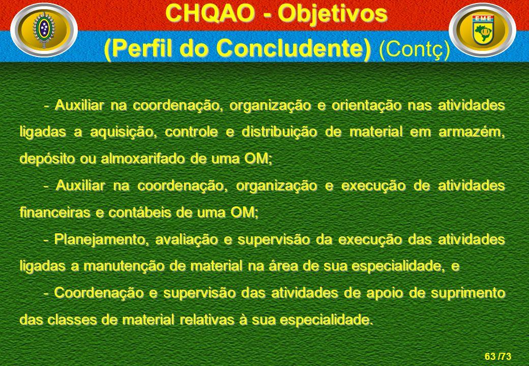 63 /73 - Auxiliar na coordenação, organização e orientação nas atividades ligadas a aquisição, controle e distribuição de material em armazém, depósit