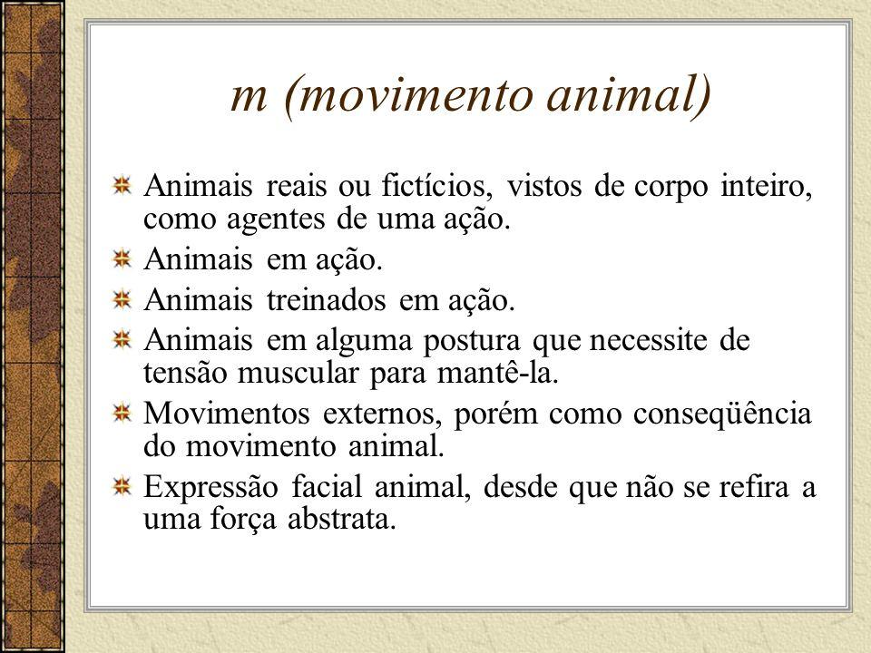 m (movimento animal) Animais reais ou fictícios, vistos de corpo inteiro, como agentes de uma ação.