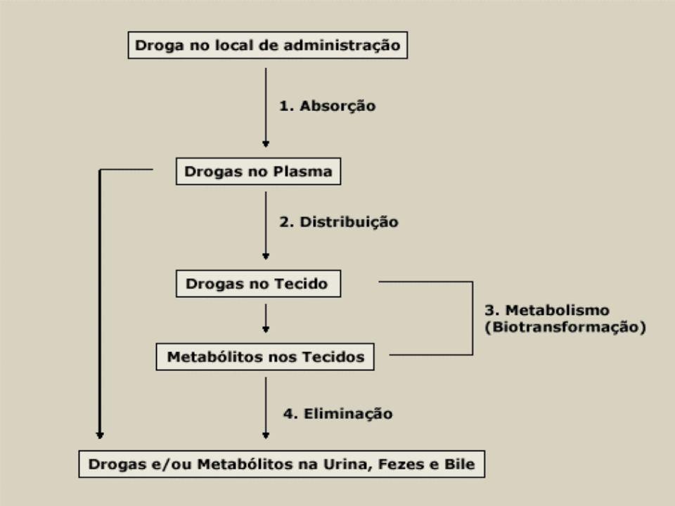 BIOTRANSFORMAÇÃO Reações metabólicas: oxidação, redução, hidrólise e conjugação com o ácido glicurônico.
