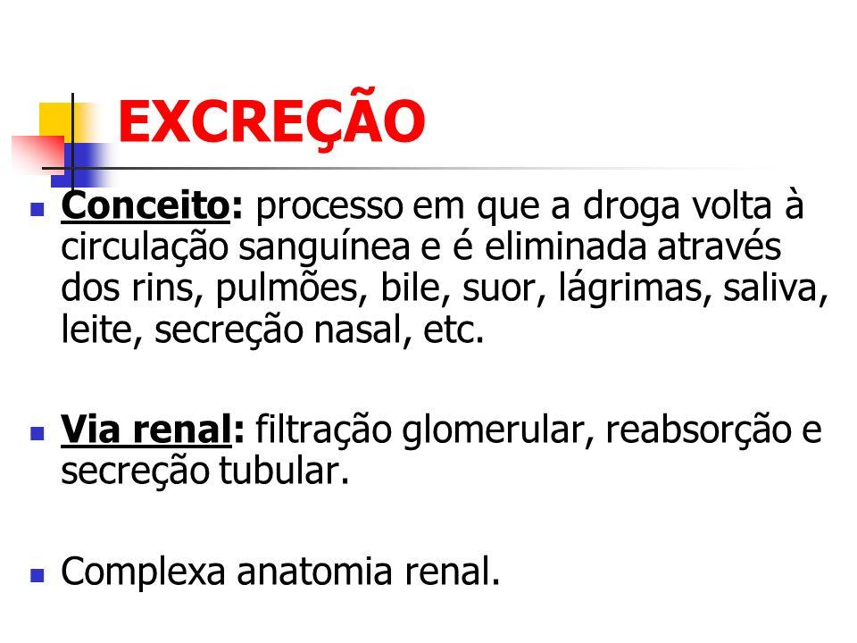 EXCREÇÃO Conceito: processo em que a droga volta à circulação sanguínea e é eliminada através dos rins, pulmões, bile, suor, lágrimas, saliva, leite,