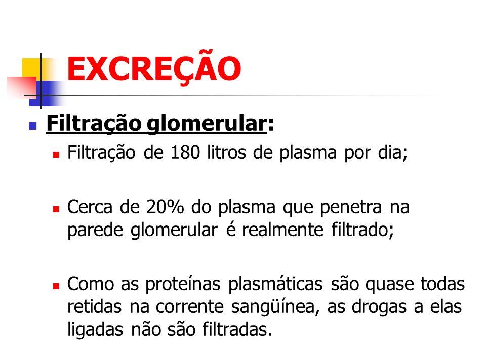 EXCREÇÃO Filtração glomerular: Filtração de 180 litros de plasma por dia; Cerca de 20% do plasma que penetra na parede glomerular é realmente filtrado