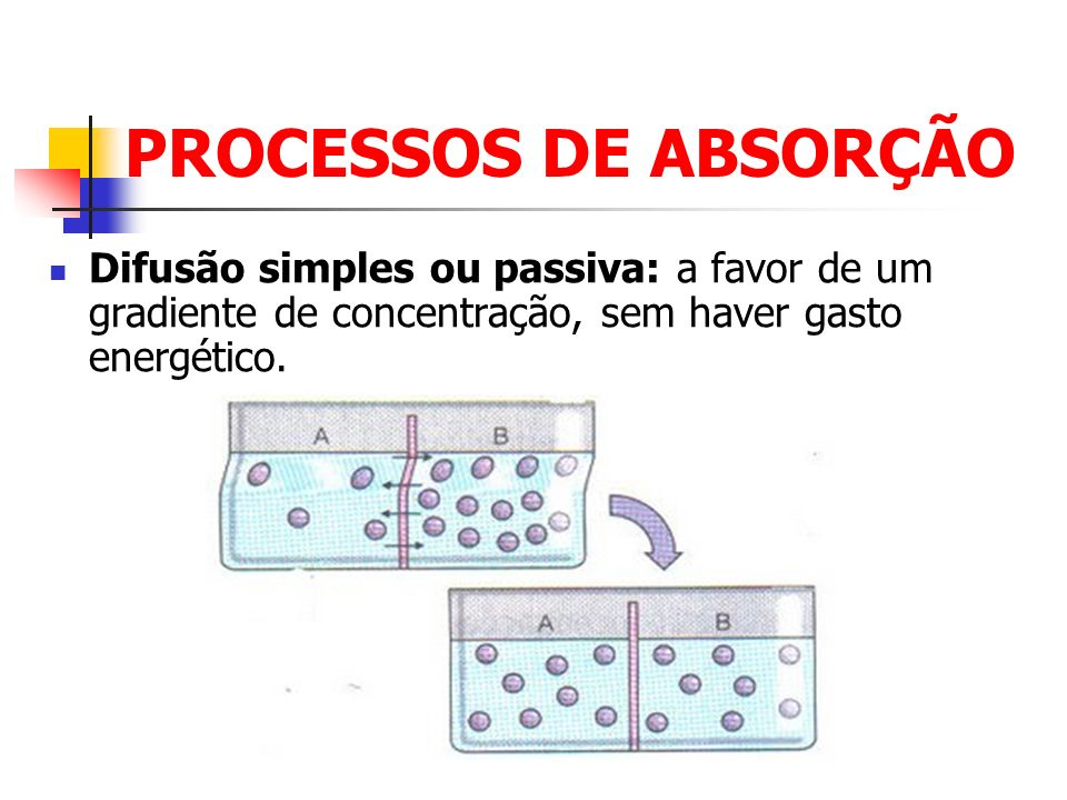 PROCESSOS DE ABSORÇÃO Filtração: substâncias de baixo PM através de poros de membranas.