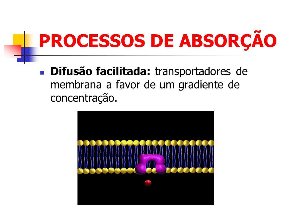 DISTRIBUIÇÃO Conceito: Transporte da droga, após ser absorvida, pelos fluidos do corpo a todos os tecidos.