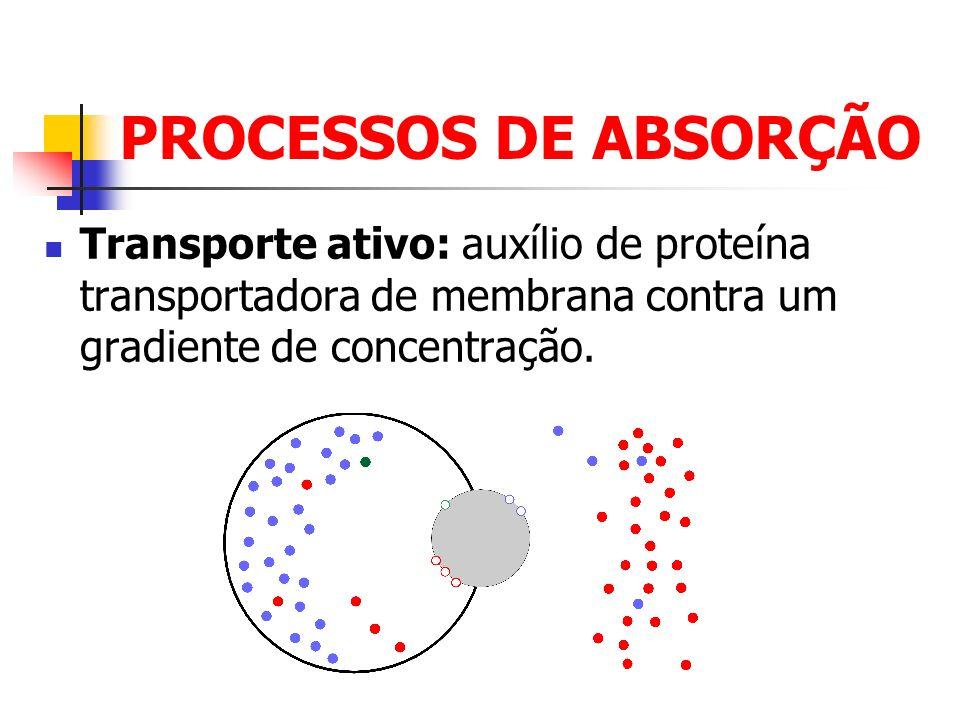 DISTRIBUIÇÃO Características da Distribuição: As moléculas são transportadas na sua forma livre ou ligadas a proteínas plasmáticas.
