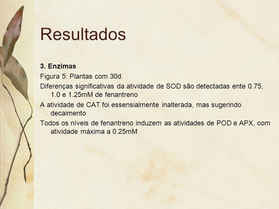 Resultados 3. Enzimas Figura 5: Plantas com 30d Diferenças significativas da atividade de SOD são detectadas ente 0.75, 1.0 e 1.25mM de fenantreno A a