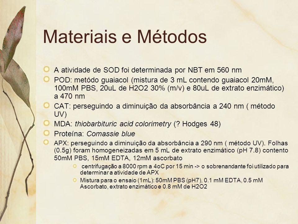 Materiais e Métodos A atividade de SOD foi determinada por NBT em 560 nm POD: metódo guaiacol (mistura de 3 mL contendo guaiacol 20mM, 100mM PBS, 20uL