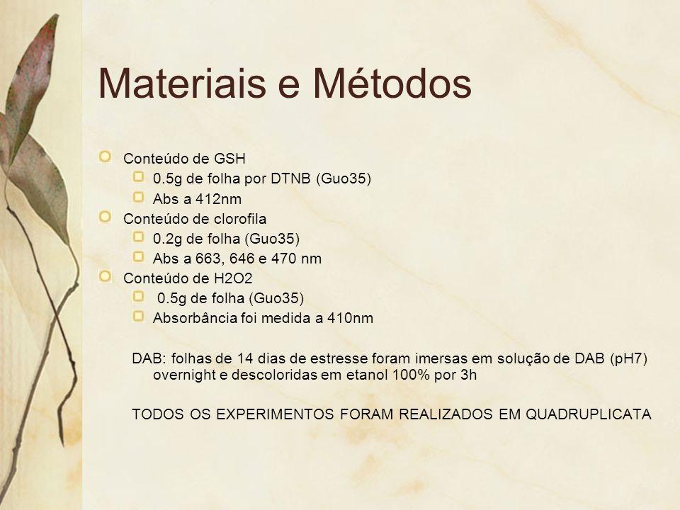 Materiais e Métodos Conteúdo de GSH 0.5g de folha por DTNB (Guo35) Abs a 412nm Conteúdo de clorofila 0.2g de folha (Guo35) Abs a 663, 646 e 470 nm Con
