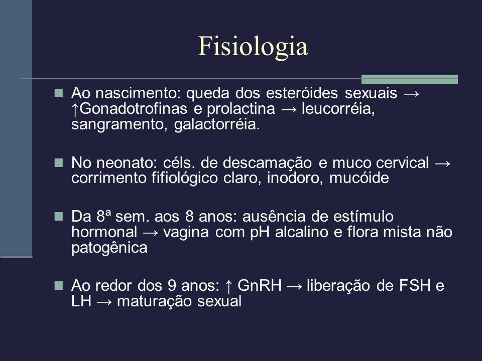 Fisiologia Ao nascimento: queda dos esteróides sexuais Gonadotrofinas e prolactina leucorréia, sangramento, galactorréia. No neonato: céls. de descama