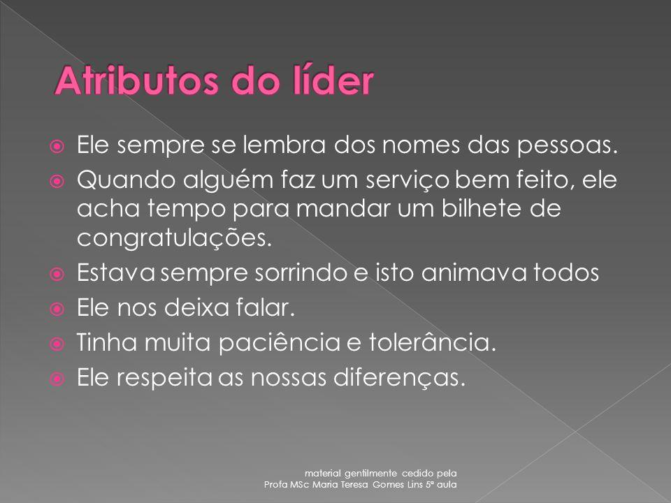 Chefia Poder material gentilmente cedido pela Profa MSc Maria Teresa Gomes Lins 5ª aula
