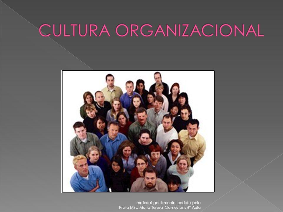 CULTURA ORGANIZACIONAL MUDANÇAS DE CULTURA ORGANIZACIONAL DIVERSIDADE CULTURAL, IMPLICAÇÕES NA GESTÃO DE PESSOAS DIAGNÓSTICO ORGANIZACIONAL COMPORTAME