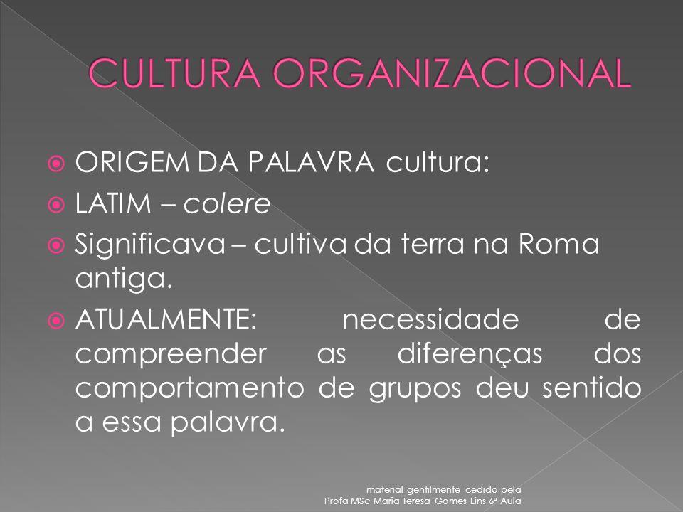 material gentilmente cedido pela Profa MSc Maria Teresa Gomes Lins 6ª Aula