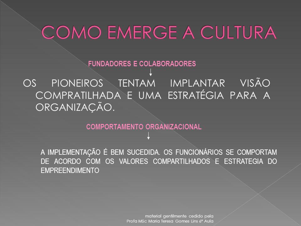A cultura é um processo acumulativo que resulta do aprendizado obtido da totalidade da experiência histórica das gerações antecedentes. As peculiarida