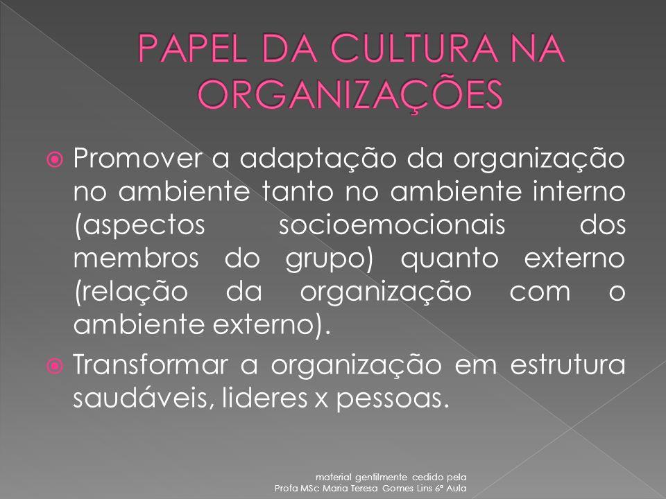 PAI MÃE IRMÃO CONCEITO DE AMIGO material gentilmente cedido pela Profa MSc Maria Teresa Gomes Lins 6ª Aula