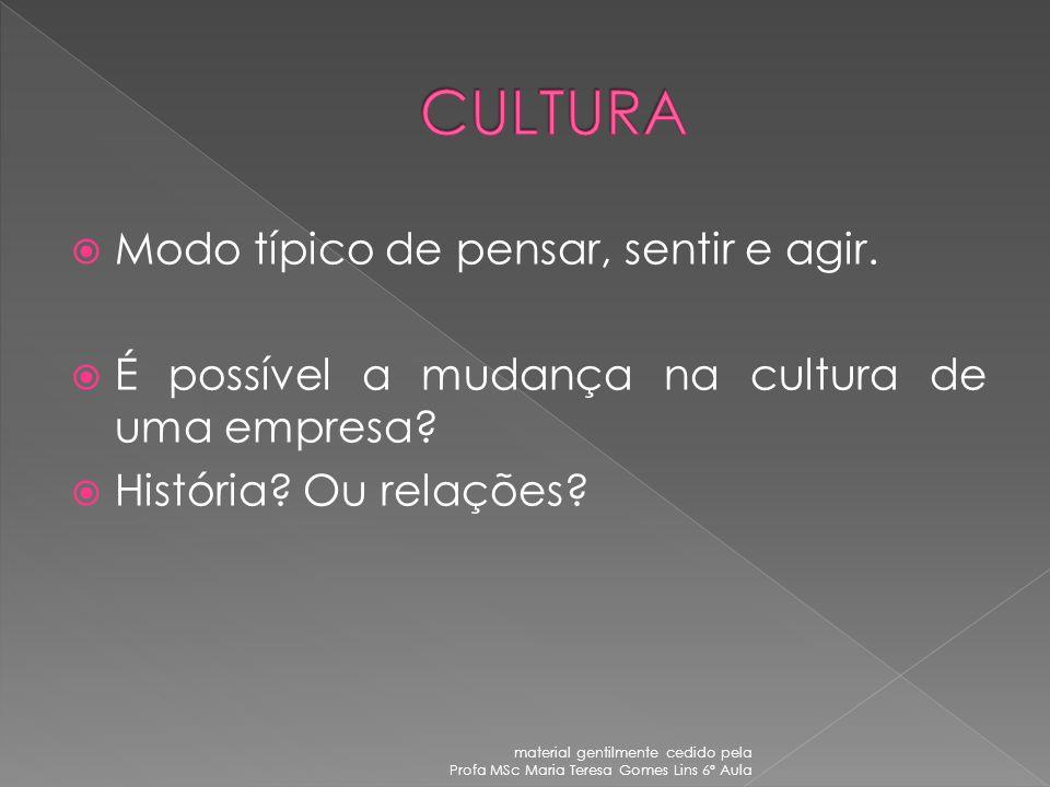 Promover a adaptação da organização no ambiente tanto no ambiente interno (aspectos socioemocionais dos membros do grupo) quanto externo (relação da o