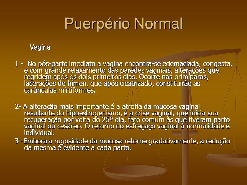 Puerpério Normal Vagina Vagina 1 - No pós-parto imediato a vagina encontra-se edemaciada, congesta, e com grande relaxamento das paredes vaginais, alt