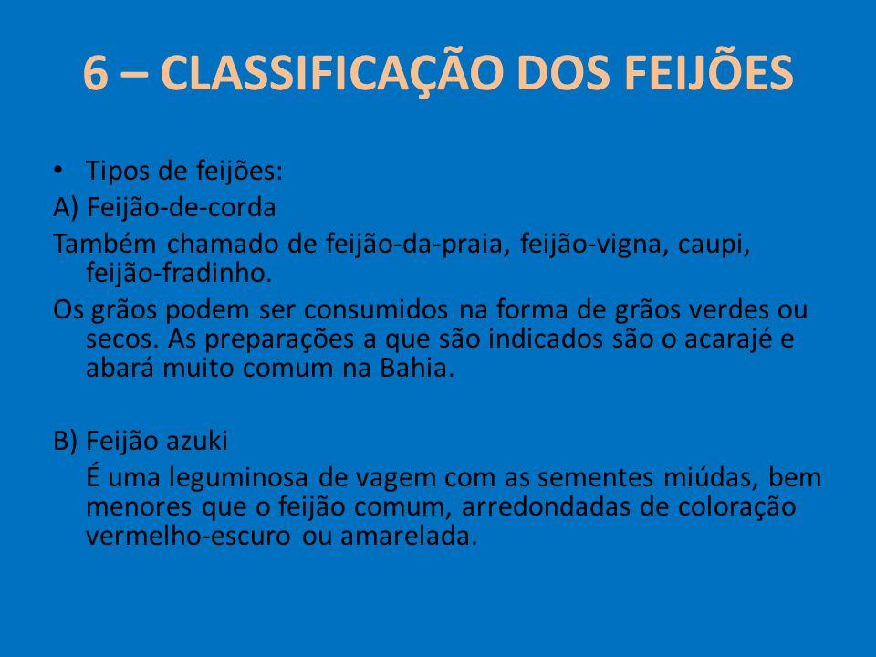 6 – CLASSIFICAÇÃO DOS FEIJÕES Tipos de feijões: A) Feijão-de-corda Também chamado de feijão-da-praia, feijão-vigna, caupi, feijão-fradinho. Os grãos p