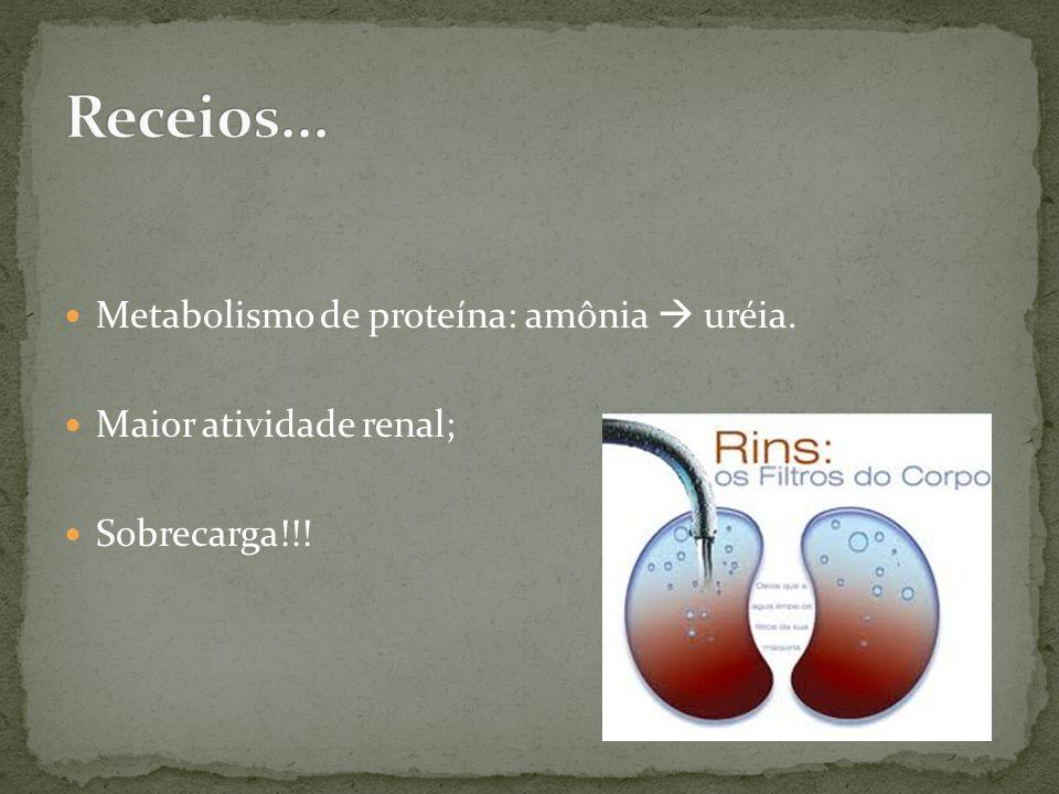 Metabolismo de proteína: amônia uréia. Maior atividade renal; Sobrecarga!!!