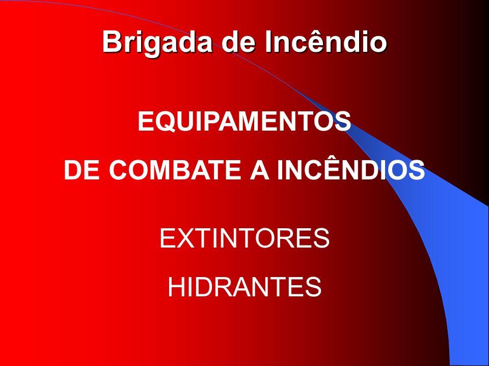 Brigada de Incêndio EQUIPAMENTOS DE COMBATE A INCÊNDIOS EXTINTORES HIDRANTES