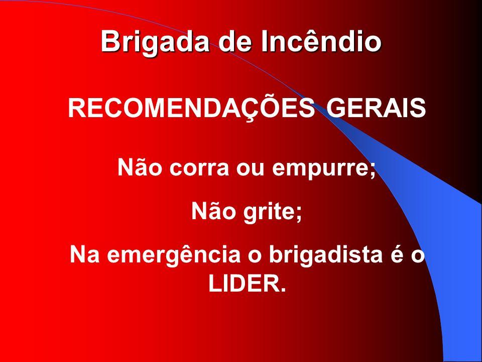 Brigada de Incêndio RECOMENDAÇÕES GERAIS Não corra ou empurre; Não grite; Na emergência o brigadista é o LIDER.