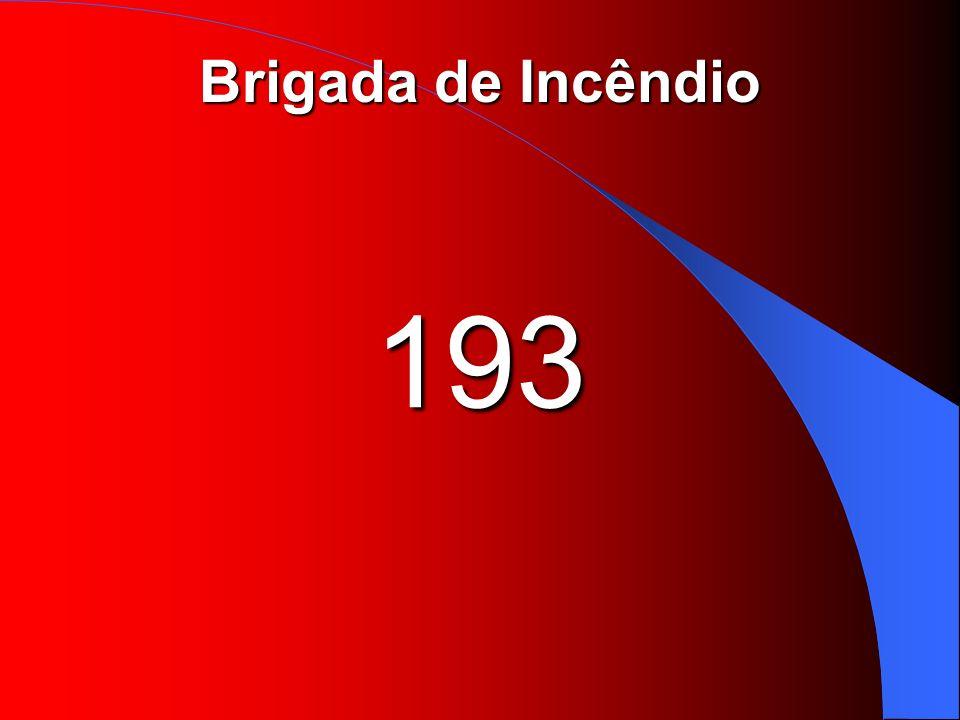 Brigada de Incêndio 193