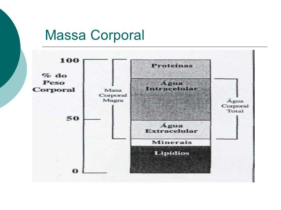Massa Corporal