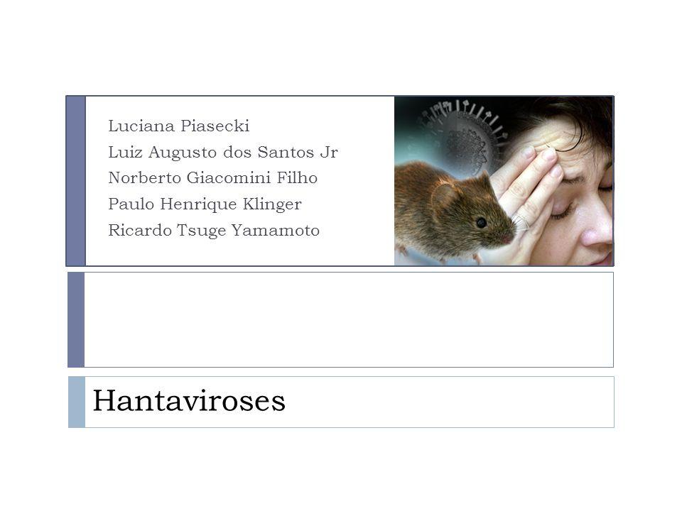 HANTAVIROSE Quadro Clínico: Febre Hemorrágica com Sd. Renal: PI. 1ª Fase: Febril.