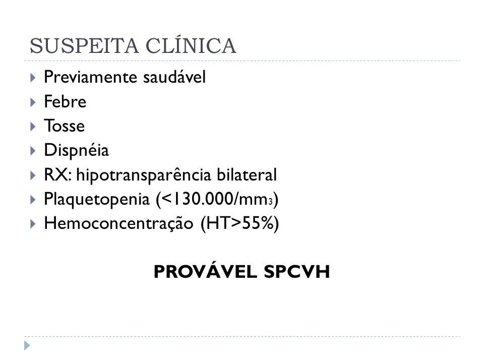 SUSPEITA CLÍNICA Previamente saudável Febre Tosse Dispnéia RX: hipotransparência bilateral Plaquetopenia (<130.000/mm 3 ) Hemoconcentração (HT>55%) PR