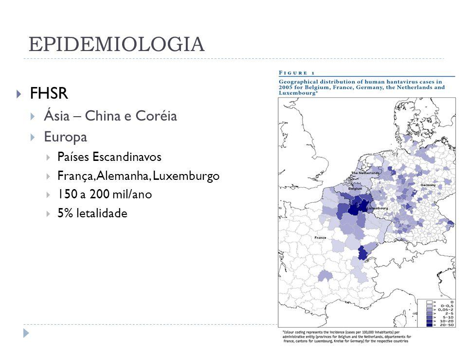 EPIDEMIOLOGIA FHSR Ásia – China e Coréia Europa Países Escandinavos França, Alemanha, Luxemburgo 150 a 200 mil/ano 5% letalidade