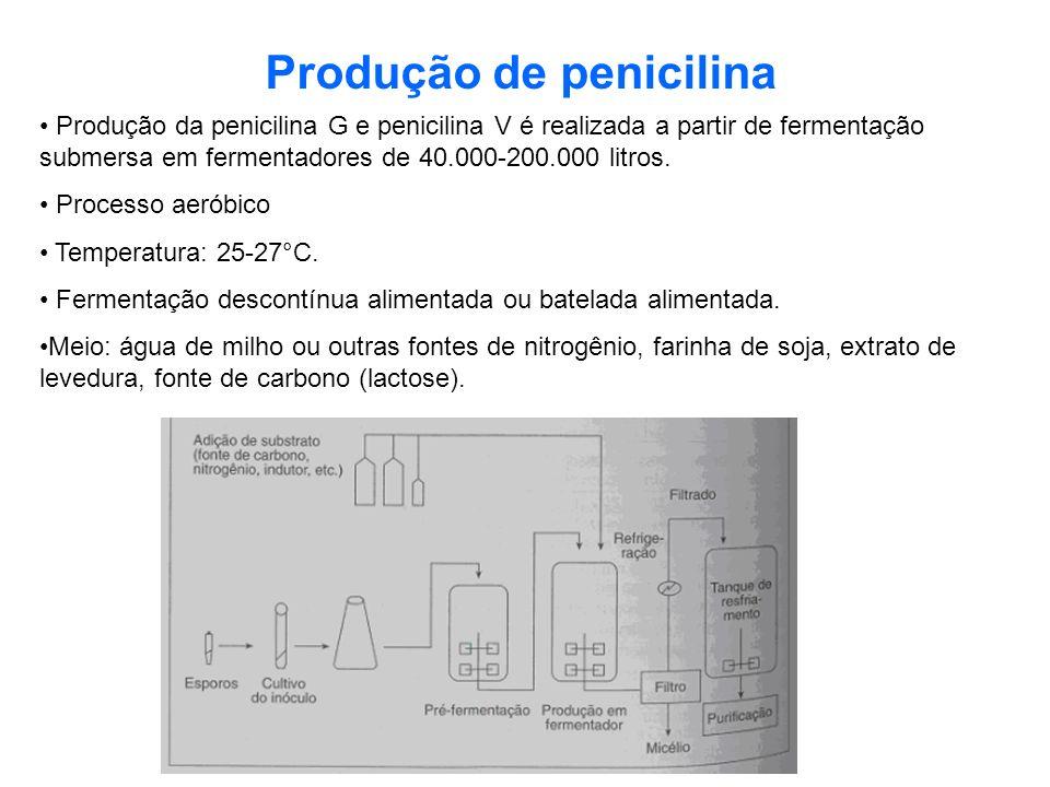 Produção de penicilina Produção da penicilina G e penicilina V é realizada a partir de fermentação submersa em fermentadores de 40.000-200.000 litros.