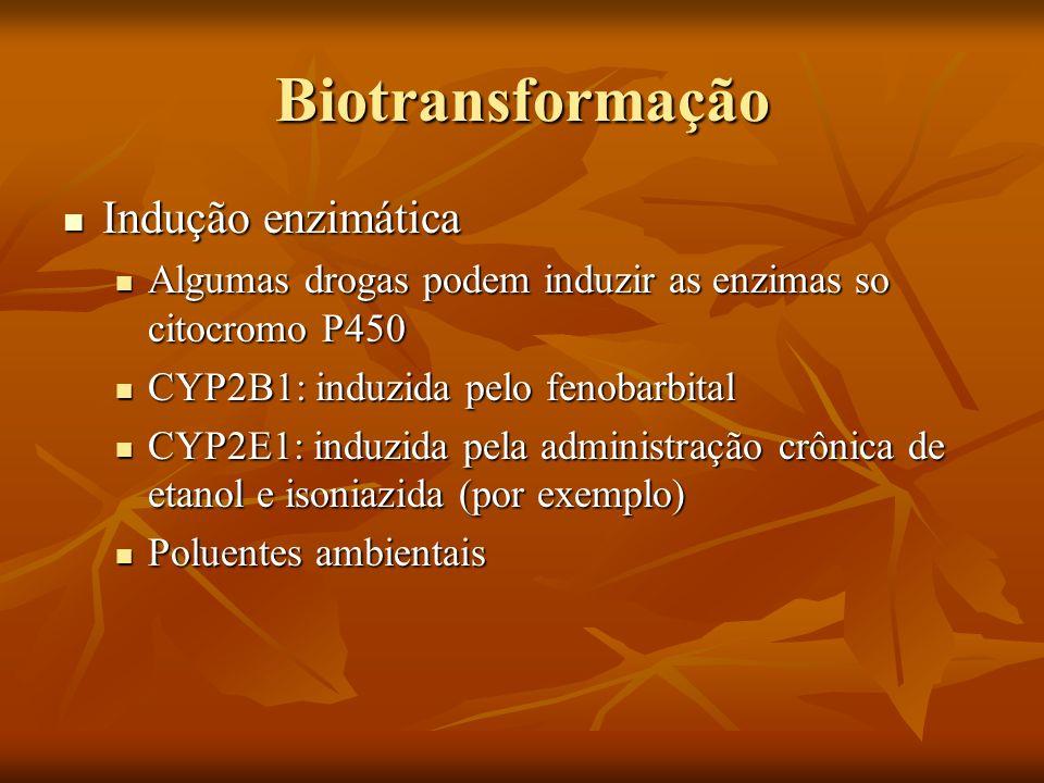 Biotransformação Indução enzimática Indução enzimática Algumas drogas podem induzir as enzimas so citocromo P450 Algumas drogas podem induzir as enzim