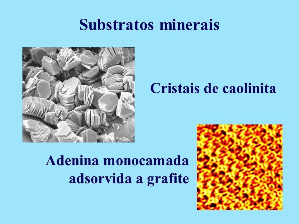 Cristais de caolinita Adenina monocamada adsorvida a grafite Substratos minerais