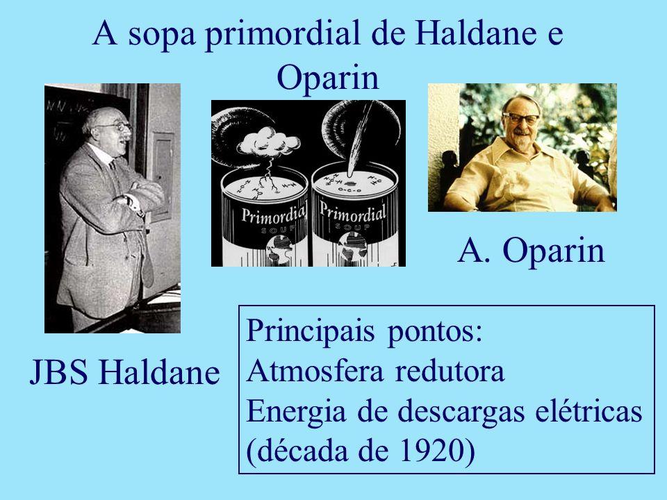 JBS Haldane A. Oparin Principais pontos: Atmosfera redutora Energia de descargas elétricas (década de 1920) A sopa primordial de Haldane e Oparin
