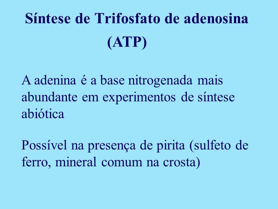 (ATP) Possível na presença de pirita (sulfeto de ferro, mineral comum na crosta) A adenina é a base nitrogenada mais abundante em experimentos de sínt