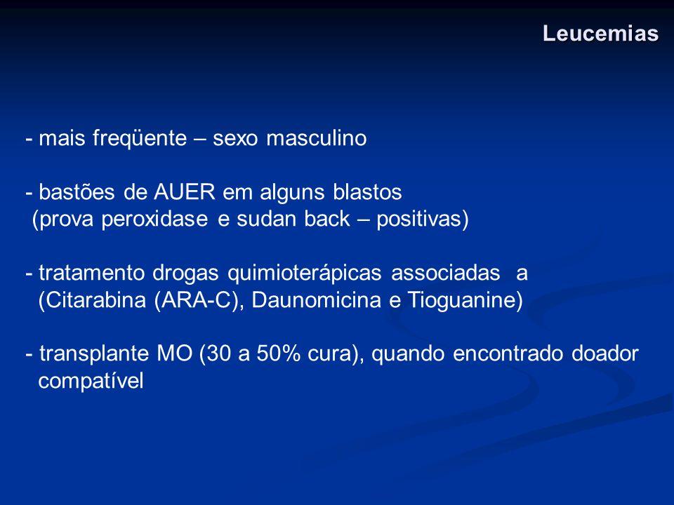 - mais freqüente – sexo masculino - bastões de AUER em alguns blastos (prova peroxidase e sudan back – positivas) - tratamento drogas quimioterápicas