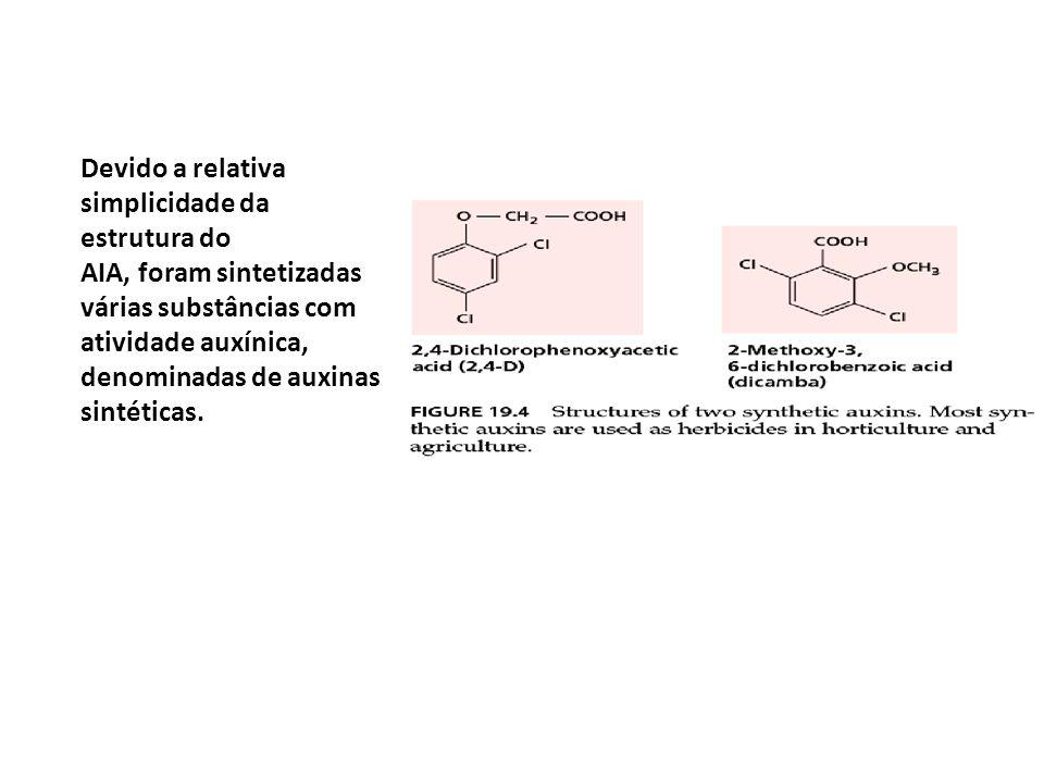 Devido a relativa simplicidade da estrutura do AIA, foram sintetizadas várias substâncias com atividade auxínica, denominadas de auxinas sintéticas.