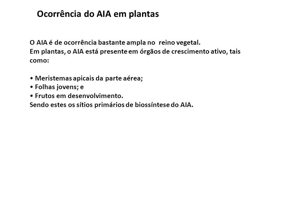 Ocorrência do AIA em plantas O AIA é de ocorrência bastante ampla no reino vegetal. Em plantas, o AIA está presente em órgãos de crescimento ativo, ta