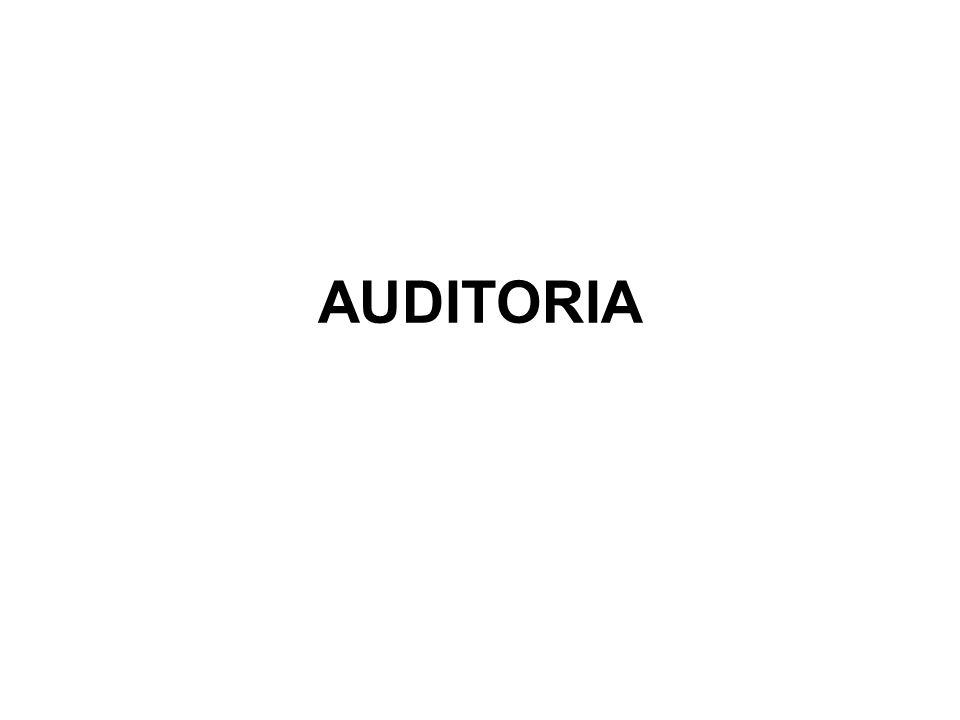 ORIGEM DA AUDITORIA A prática da auditoria surgiu no século XV ou XVI, na Itália.