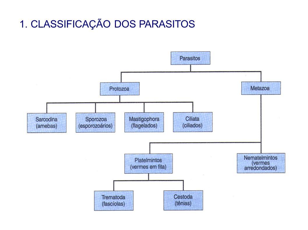 1. CLASSIFICAÇÃO DOS PARASITOS
