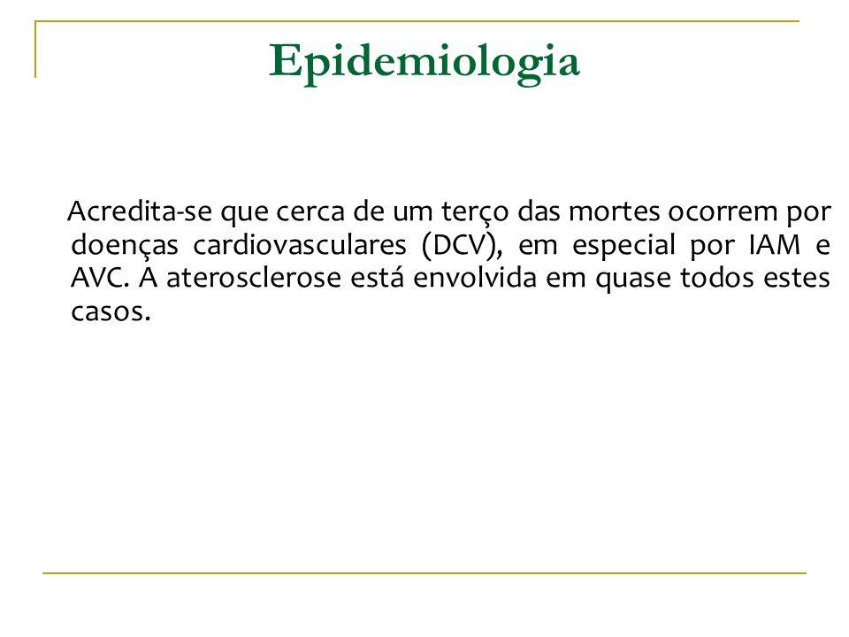 Epidemiologia Acredita-se que cerca de um terço das mortes ocorrem por doenças cardiovasculares (DCV), em especial por IAM e AVC. A aterosclerose está