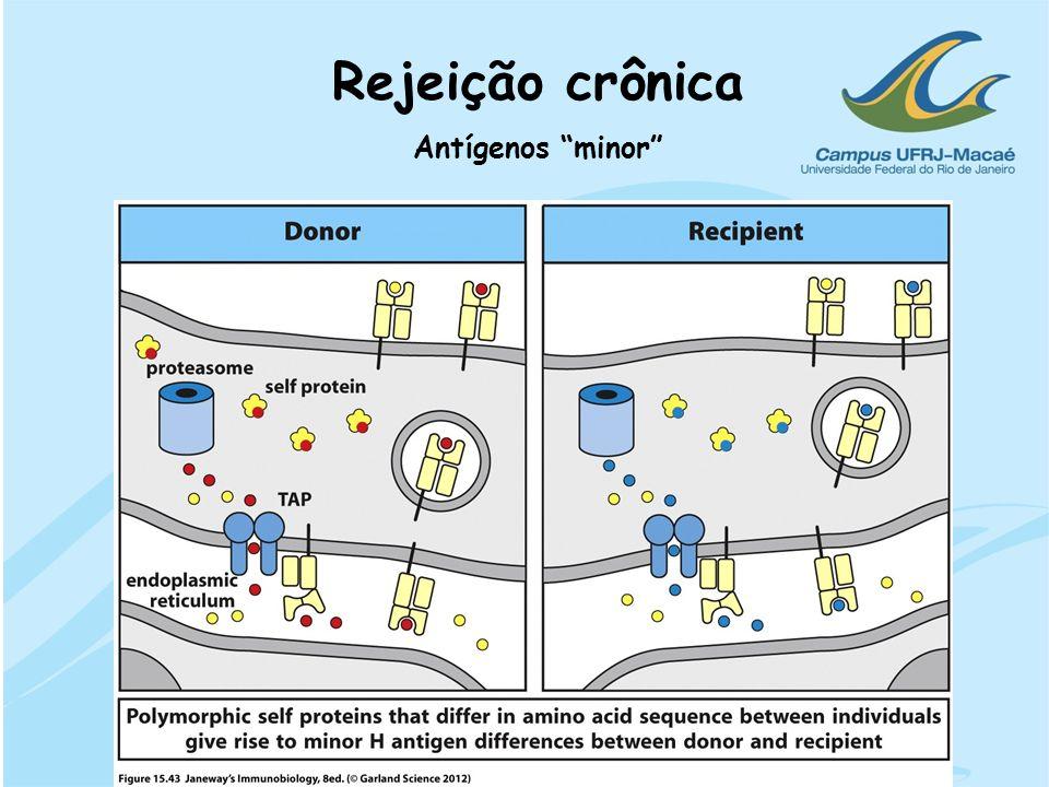 Antígenos minor