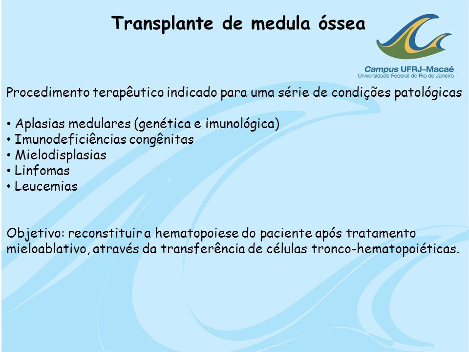 Transplante de medula óssea Procedimento terapêutico indicado para uma série de condições patológicas Aplasias medulares (genética e imunológica) Imun