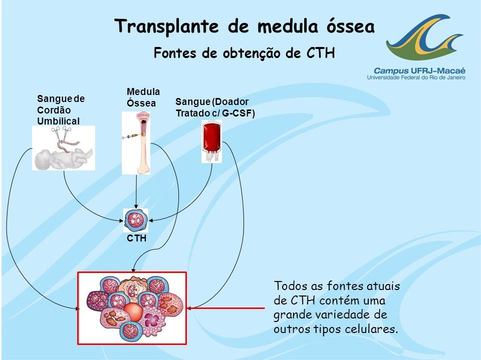 CTH Sangue de Cordão Umbilical Medula Óssea Sangue (Doador Tratado c/ G-CSF) Transplante de medula óssea Fontes de obtenção de CTH Todos as fontes atu